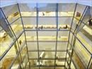 Inaugurata a Roma la Bibliotheca Hertziana di Navarro Baldeweg