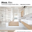 MOSA - Mosa tiles for Townhouse Complex Berlin Mitte